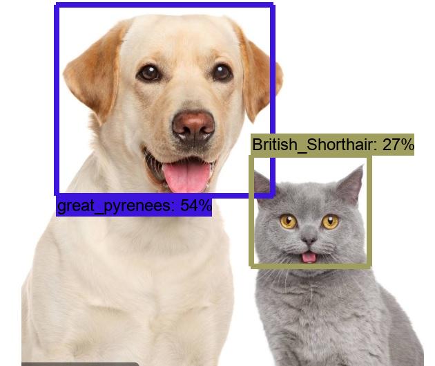 公开数据集训练模型实现宠物识别.png