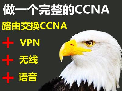 做完整的CCNA:路由交换+无线+语音专题