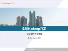实战Hadoop-2.7.2开发视频课程