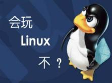 Linux基础命令讲解实战视频课程