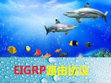 CCNP之EIGRP路由协议快速搭建视频课程
