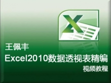 【王佩丰】Excel 2010数据透视表视频教程 完整版