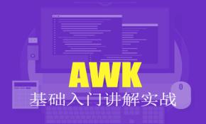 AWK 基础入门讲解实战视频课程
