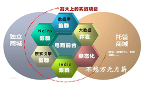 大型分布式redis+solr+Linux+nginx+springmvc电商项目视频课程
