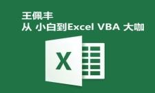 【王佩丰】从Excel小白到Excel VBA大咖视频课程套餐