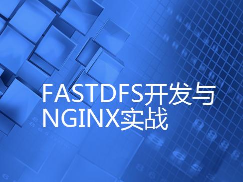 FastDFS实战开发与Nginx实战视频课程专题