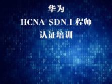 华为HCNA SDN认证培训视频课程-软件定义网络