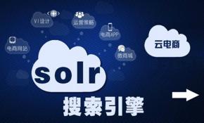 Solr教学视频基础与提升视频课程
