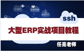 大型ERP实战项目视频教程