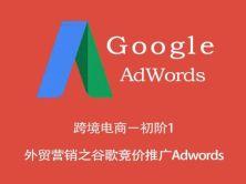 跨境电商-(初阶1)外贸营销之谷歌竞价推广Adwords视频课程