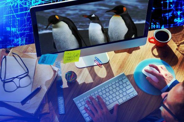 运维工程师必备技能实战视频课程专题:Linux+虚拟化