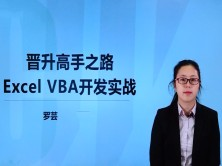 晋升高手之路VBA for Excel视频教程