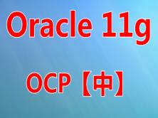Oracle11g OCP 考试实战培训视频课程(中)