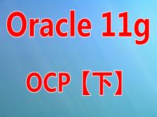 Oracle11g OCP 考试实战培训视频课程(下)