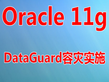 Oracle11g DataGuard容灾实施与维护实战视频课程