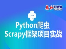Python爬虫Scrapy框架项目实战视频教程-万和IT教育
