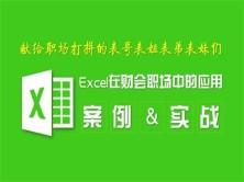 Excel在会计与财务职场中的应用实战视频教程