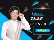 安德思科CCIE v5.0 BGP视频课程全集