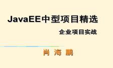 JavaEE企業中型項目精選專題