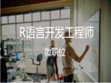 七:R语言行业项目实战