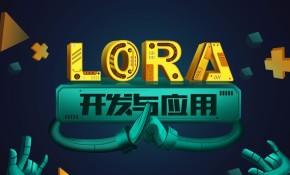 LoRa无线通信开发实战视频课程