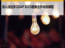 深入浅出SAP ECCS 报表合并视频课程