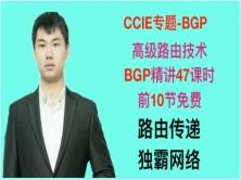 CCIE-專題-BGP視頻課程(附PPT以及RFC文檔)