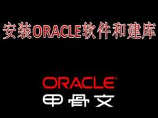 linux平台下零报错安装oracle11g视频课程