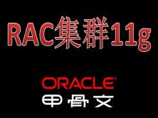 linux平台下零报错搭建oracle高可用RAC集群11g