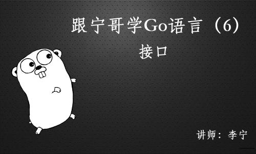 跟宁哥学Go语言视频课程(6):接口