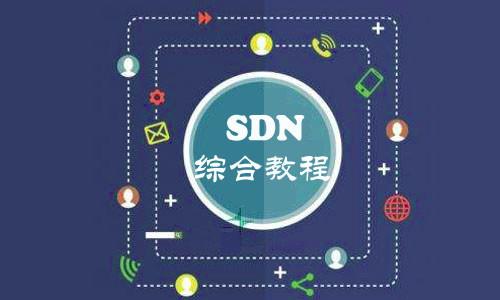 SDN综合视频教程