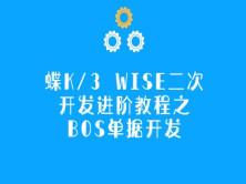 金蝶K/3 WISE二次开发进阶教程之BOS单据开发