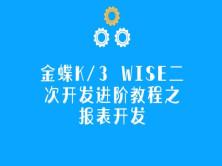金蝶K/3 WISE二次开发进阶教程之报表开发视频课程