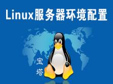 《Linux服务器环境配置》网站建设视频课程
