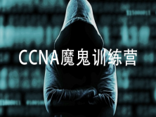 网络安全架构与部署-CCN-复制