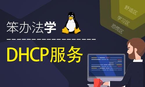 笨办法学Linux DHCP 服务器视频课程