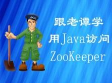 跟老谭学用Java访问ZooKeeper视频课程