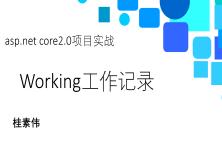 ASP.net core 2.0項目實戰視頻課程:Working
