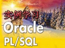 用实例学习PL/SQL视频课程