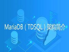 MariaDB(TDSQL)架构简介