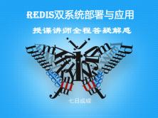 Redis雙系統應用精品課程全集(七日成蝶)