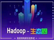 高级架构师实战养成之Hadoop生态圈系列视频课程