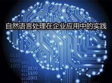 自然语言处理(NLP)在企业应用中的实践视频课程
