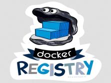搭建Docker Registry镜像仓库视频教程