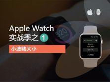 "iOS8-swift-Apple Watch实战系列视频教程之""赌大小"""