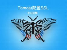 Tomcat配置SSL(七日成蝶)