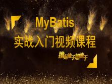 MyBatis实战入门视频课程