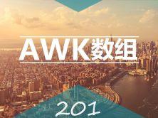 轻松精通AWK数组企业问题案例深度实战视频课程