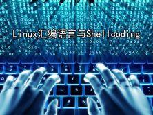 Linux汇编语言与Shellcoding实战视频课程