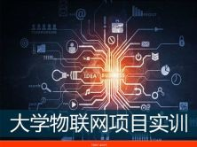 大學嵌入式物聯網項目實訓視頻課程